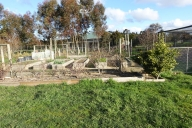 Australia House Sit Garden